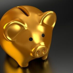 piggy-bank-2889046_640